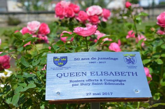 Les roses anglaises